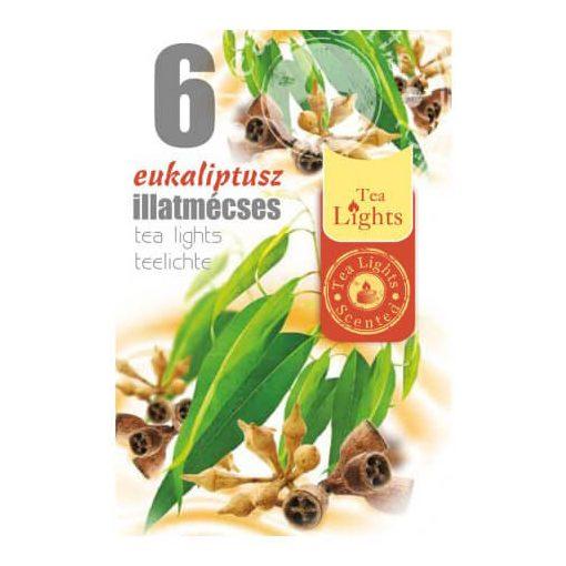 Illatmécses eukaliptusz illat 6 db-os